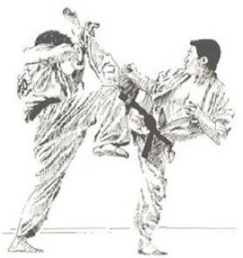 matsui kick_2